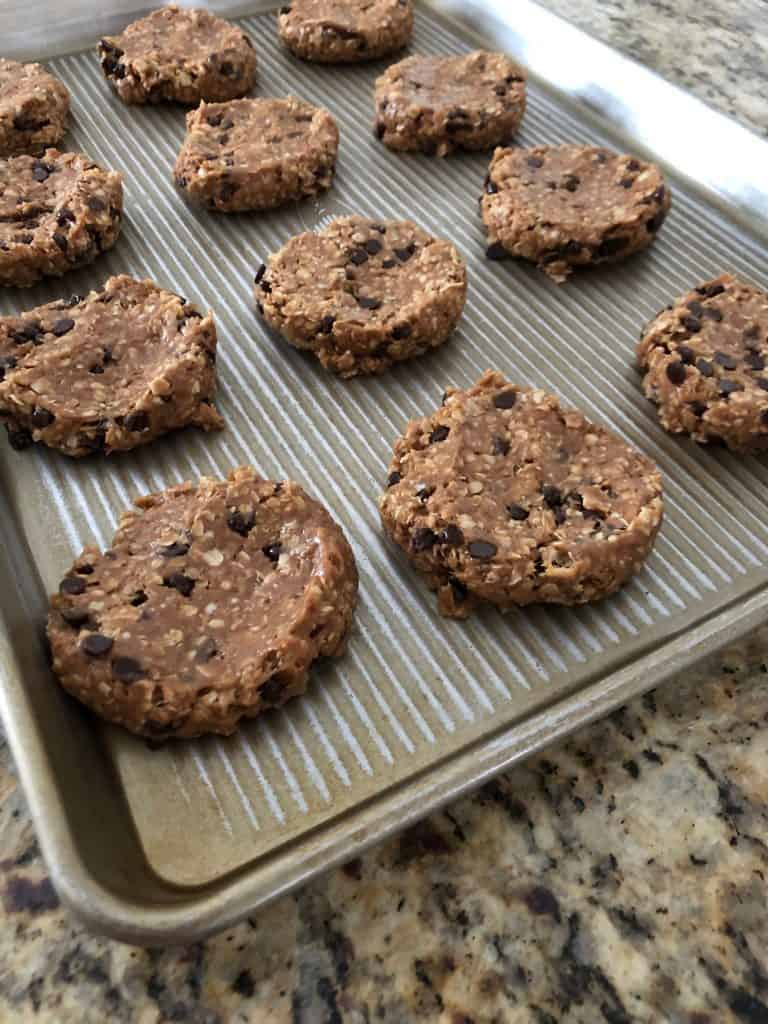 Protein Packed Oatmeal Chocolate Cookies