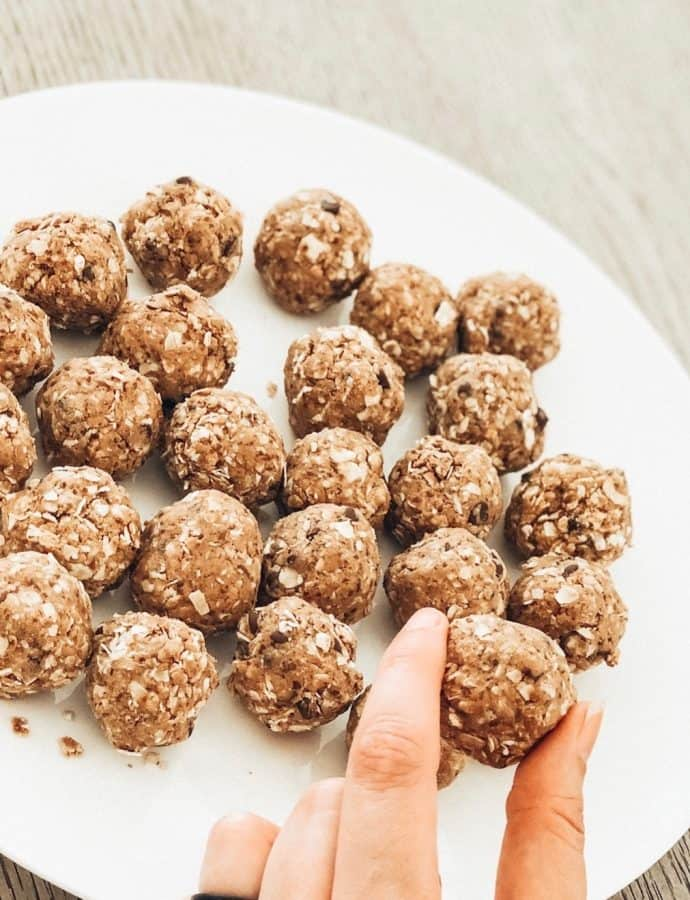 Peanut Butter Chocolate Protein Bites